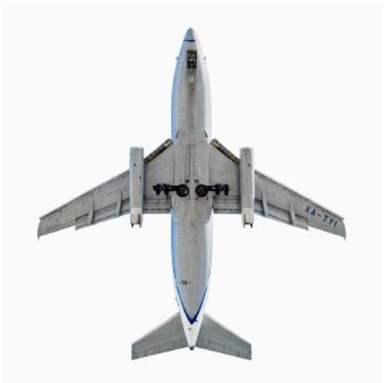 baf01950_jeffreymilstein_aviacsa-boeing-737-200