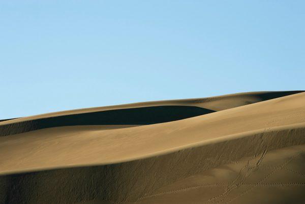 baf02369_renatealler_89-great-sand-dunes-n
